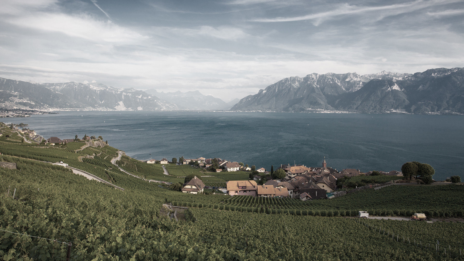 Swiss craftmanship view lake geneva leman alps beatiful scenery lac alpes vineyard vignes lavaux