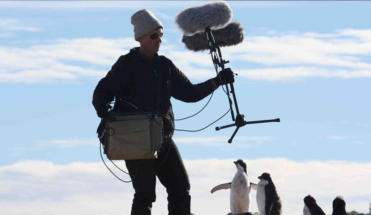Recorders explorer Seven Ares C Nagra V pinguins antartica